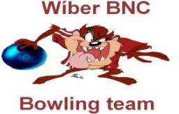 Logo_Wiber_BNC